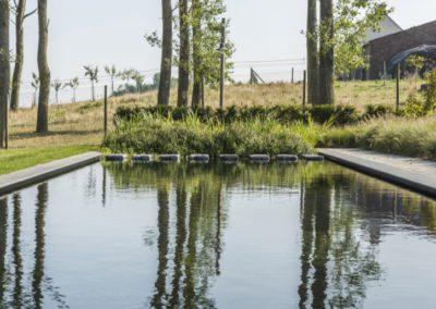 landelijke_tuin-dreamgardening811